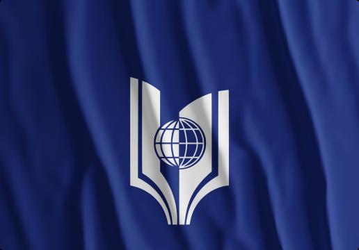 РГУТИС